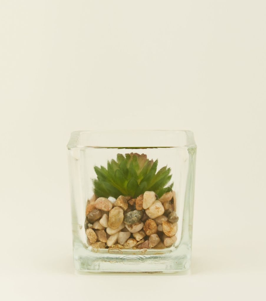 A great piece of affordable homeware from New Look - and an easy way to add plants into your home, whether you're green fingered or not!