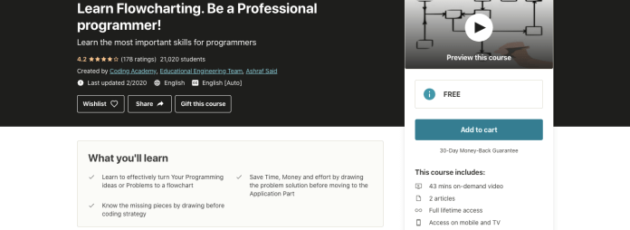 Learn Flowcharting. Be a Professional programmer!