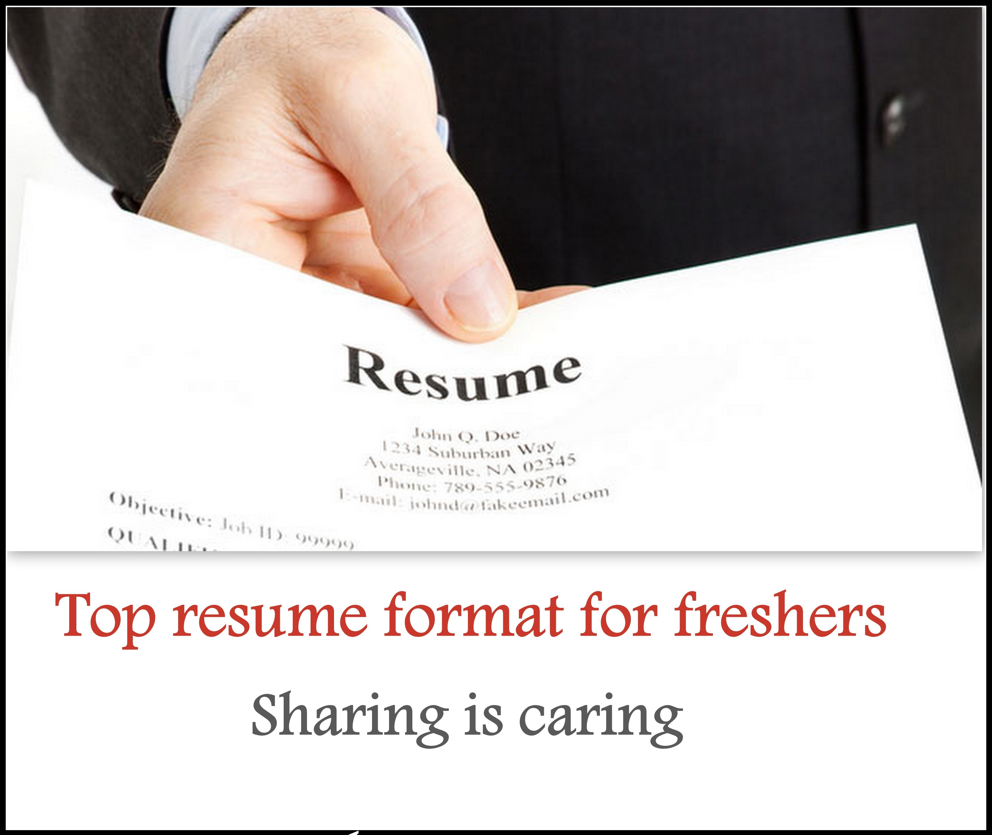 Top 5 Resume Format For Freshers Free Download Freshers360