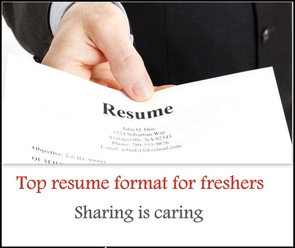 cv and resume sample freshers resume formats - Resume Formats For It Freshers