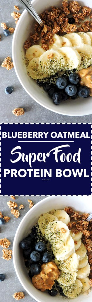 Blueberry Oatmeal Super Food Protein Bowls