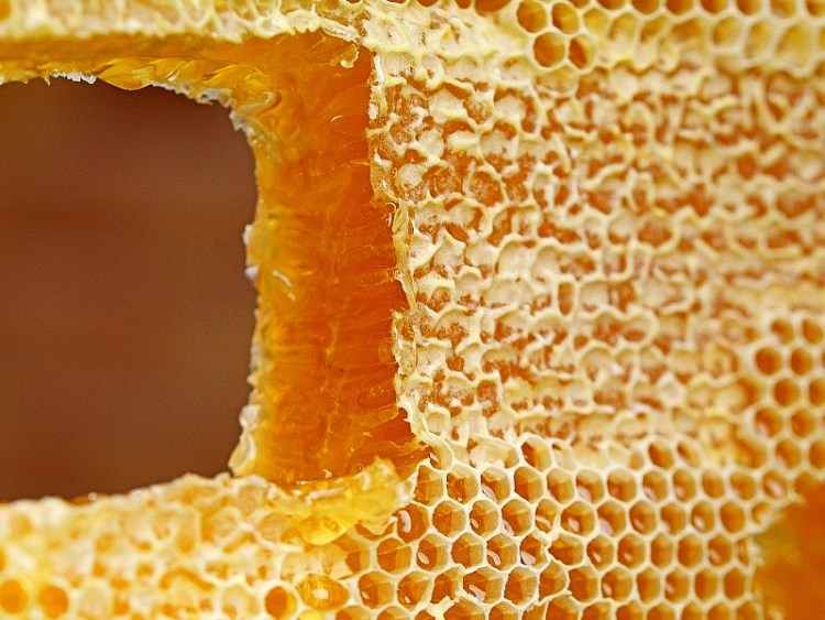 Amazing benefits of using honey on your skin