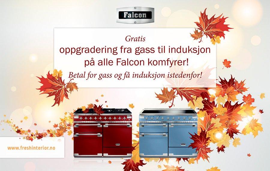 Falcon_blogg_03_900x572px