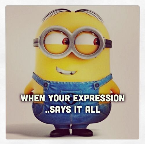 Funniest Minion Quotes and Pictures Of The Week funny minion quotes and sayings  40