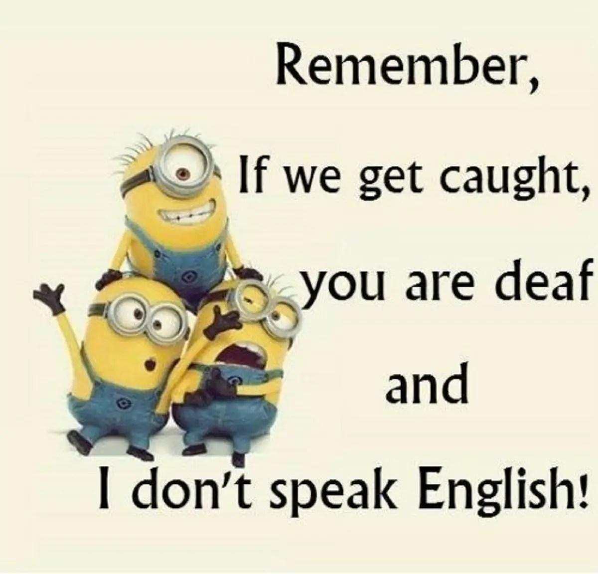 Cool Funny Jokes English