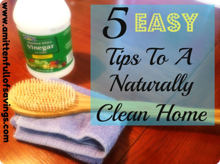 easy cleaning natural tips