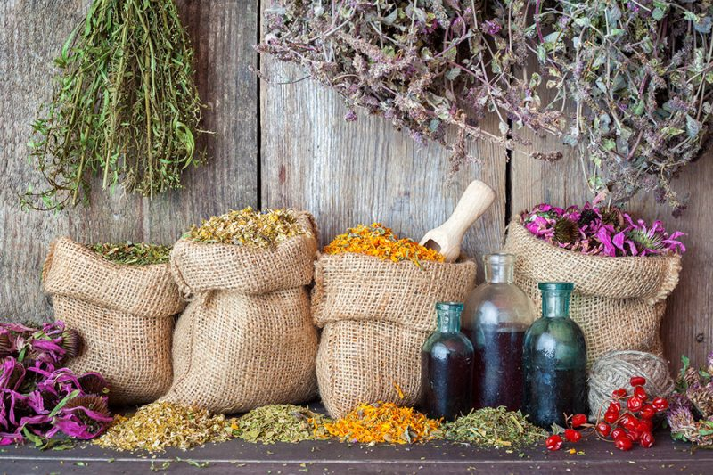 herbs and essential oils for earth day