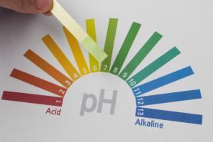 Fresh Spirulina Alkalinity