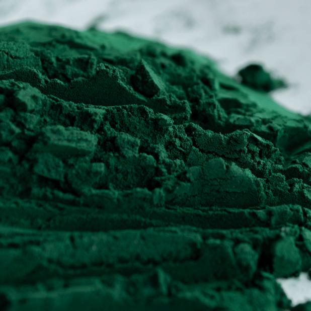 Fresh Spirulina Pure Powder Image
