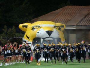 The Tigers take the field
