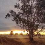 Sun coming thru clouds