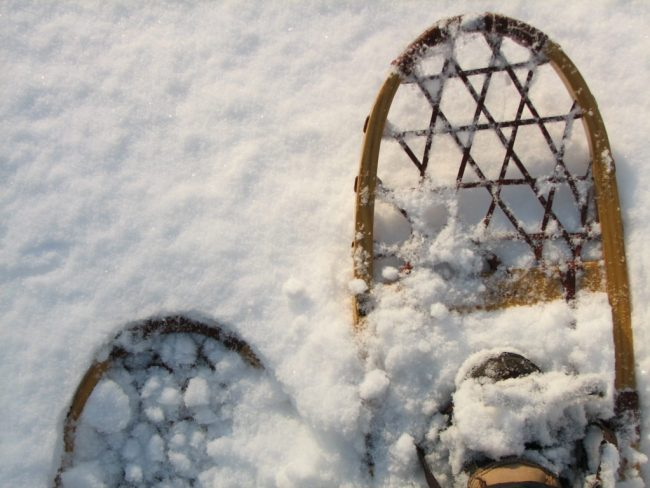 Go on a guided snowshoeing trek