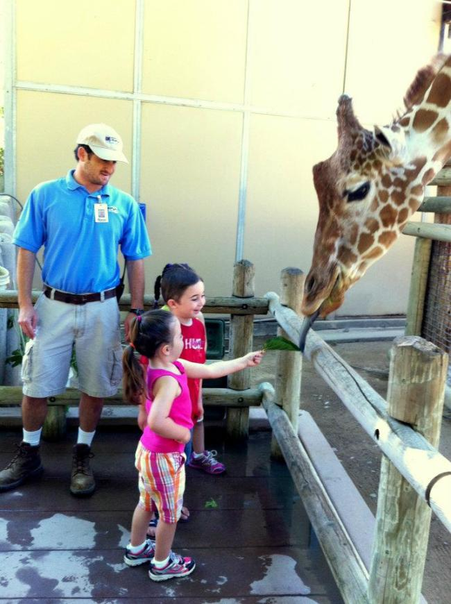 Kids love animal interaction.