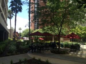 Great Landscape Architecture Boosts Hidden Gem in DTF