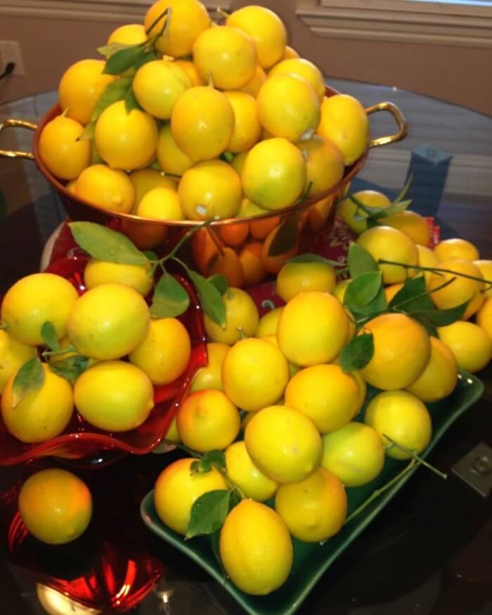 Leftover lemons.