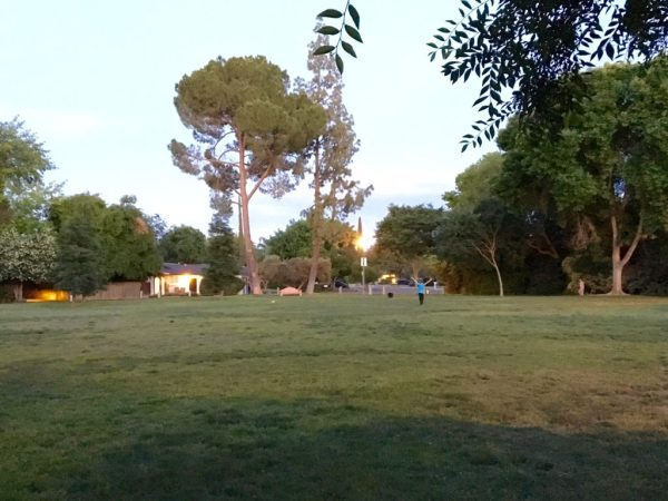 The field at Tenaya Park