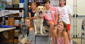 "Valley Animal Center Offers Kids' ""Pets-Giving"" Camp During Thanksgiving Break"