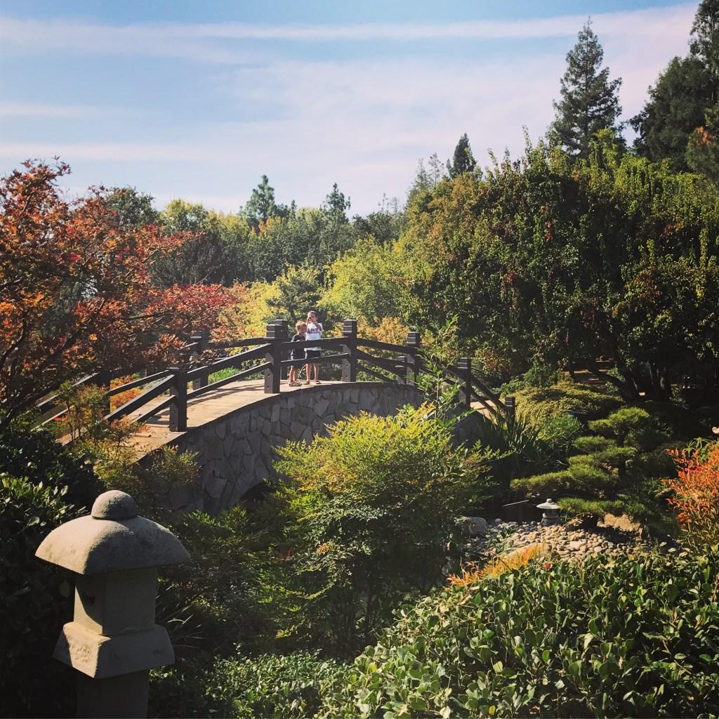 shinzen bridge