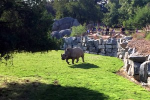 Fresno Chaffee Zoo Introduces Evenings on the Savannah Series