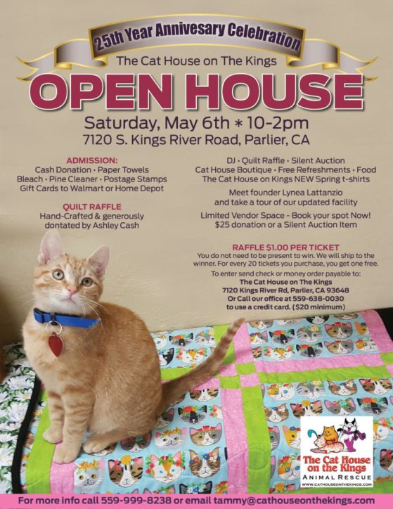 cat house open house