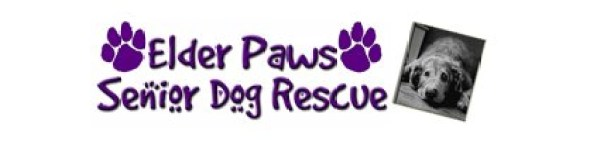elder paws foundation