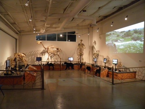 6 local museums