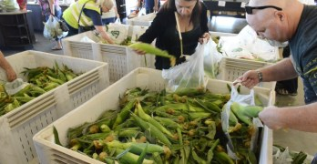 Corn expected to arrive this week at Fresno State
