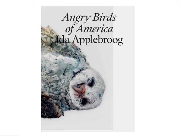 Ida Applebroog Angry Birds of America