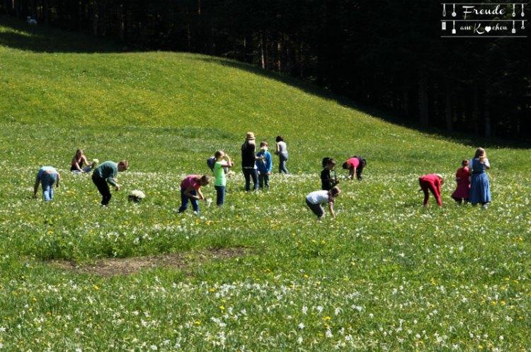 Abseits vom Narzissen Fest in Bad Aussee & am Grundlsee - Freude am Kochen