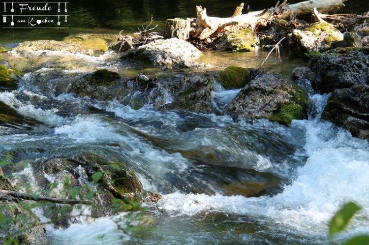 Wiesenschaumkraut - Toplitzsee - Gössl - Ausseer Land - Freude am Kochen - Reisebericht