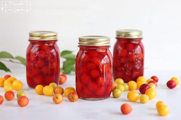 Kriecherl Kompott - Ringlotten (Reineclauden) - Rezept vegan - Freude am Kochen