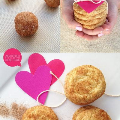 Snickerdoodle Cookie Grams