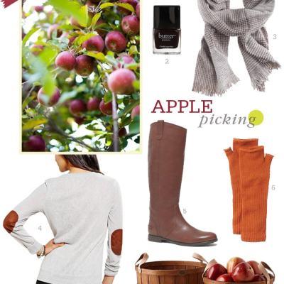 Let's Go Apple Picking