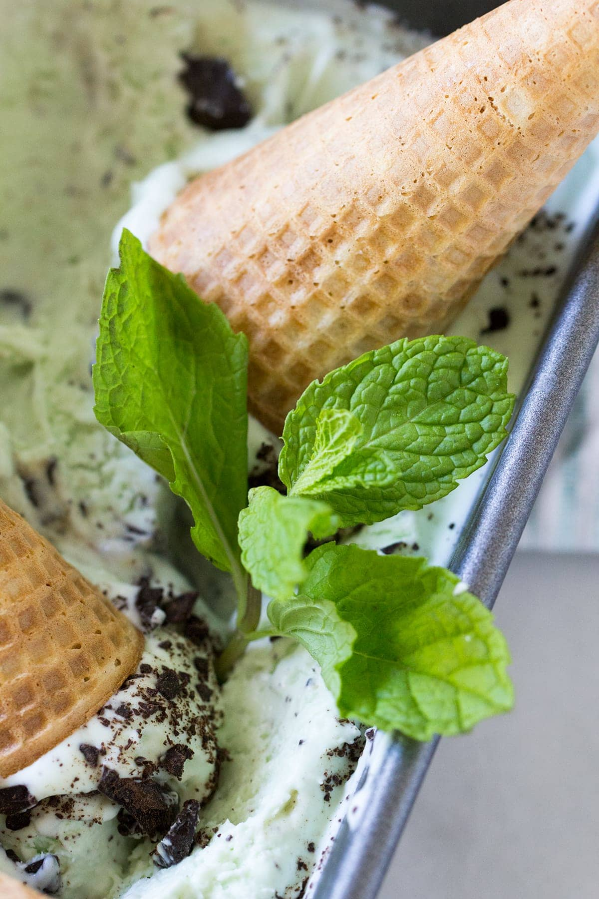 No Churn Real Mint Chocolate Chip Ice Cream made with fresh mint and real cream