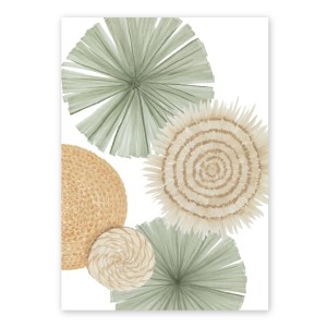 Fan Palms