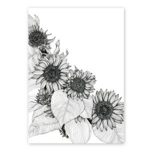 Sunflowers Oblique