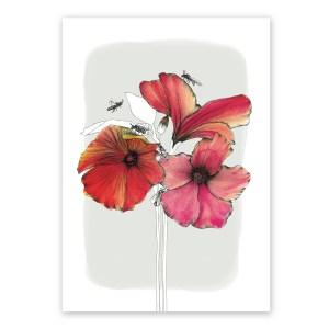 hibiscus bees