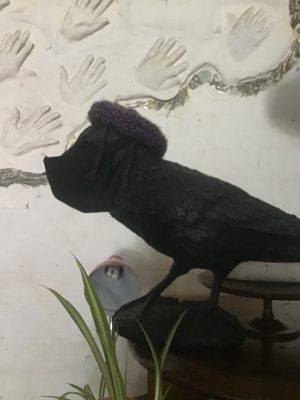 image of crow with mask