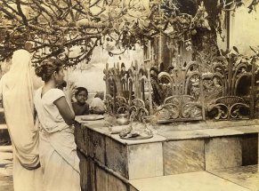 Hindu wife prays to the God Siva for blessing of fertility. Phallic symbol is obscured by iron grating at base of a type cactus tree which is believed to have power to endow worshipper with productive powers. Woman whose face barely shows behind tree has prayed in vain for days and has been seen there day after day by Red Cross girls who take GI tours to the temple.