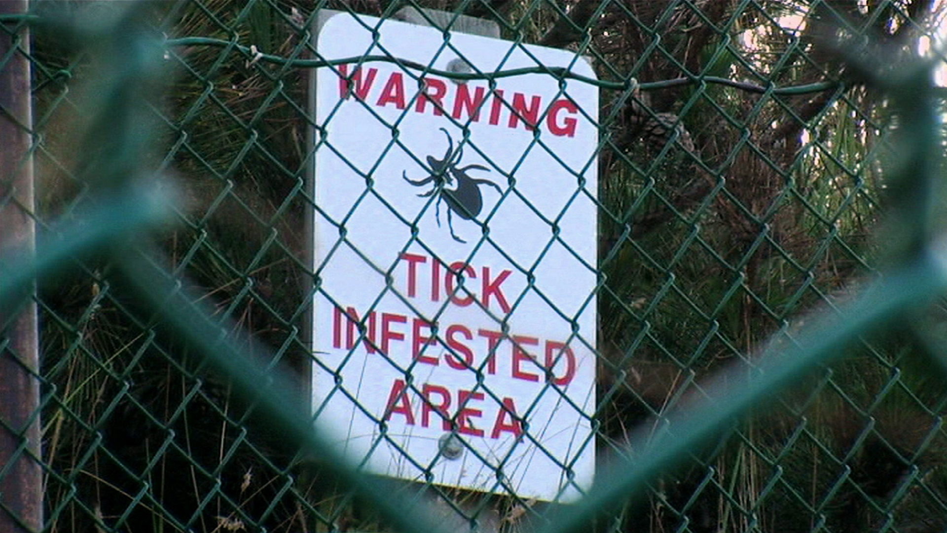 Email TICK WARNING Funny