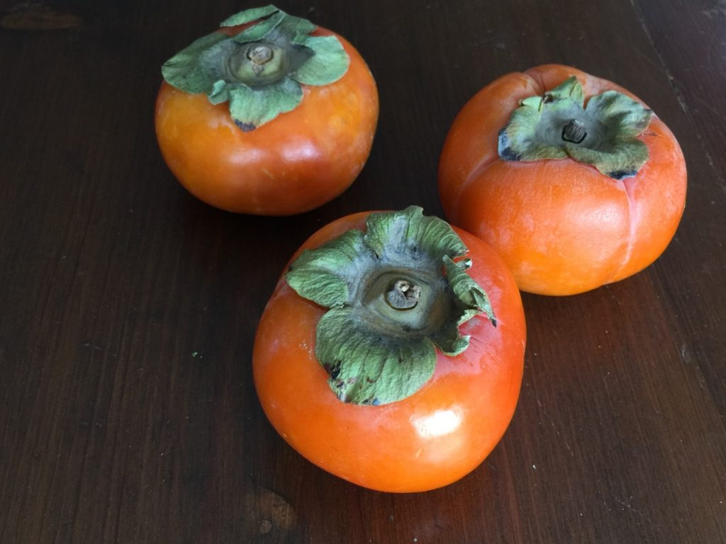 Fresh Persimmons for Persimmon Spice Amish Friendship Bread ♥ friendshipbreadkitchen.com