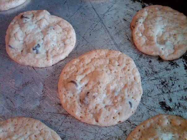 Amish Friendship Bread Chocolate Chip Cookies by Erika Yak ♥ http://www.friendshipbreadkitchen.com