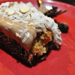 Amish Friendship Bread Coconut Amaretto Brownies