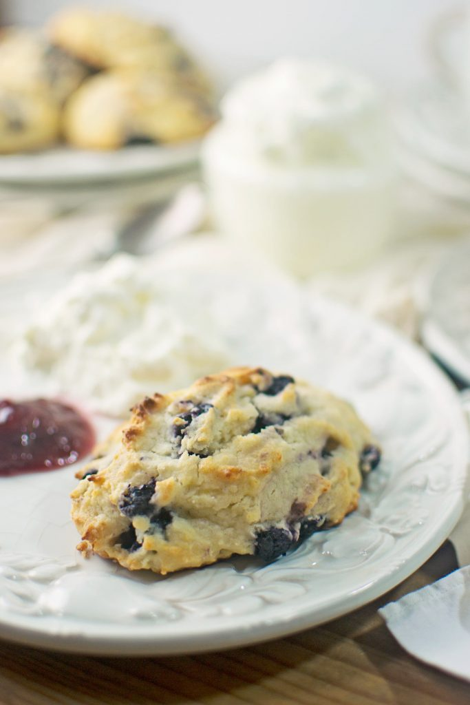 Blueberry Lemon Ricotta Amish Friendship Bread Scones by Stacey Doyle | friendshipbreadkitchen.com