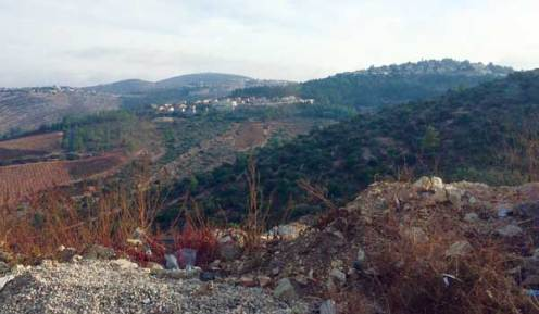 Settlement in the middle of Palestinian farm.