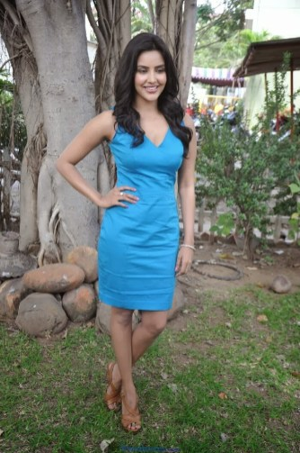 South Indian Actress Priya Anand Photos in Blue Short Dress.