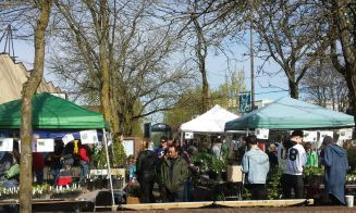 Plant sale, plaza view. March 26th, 2016