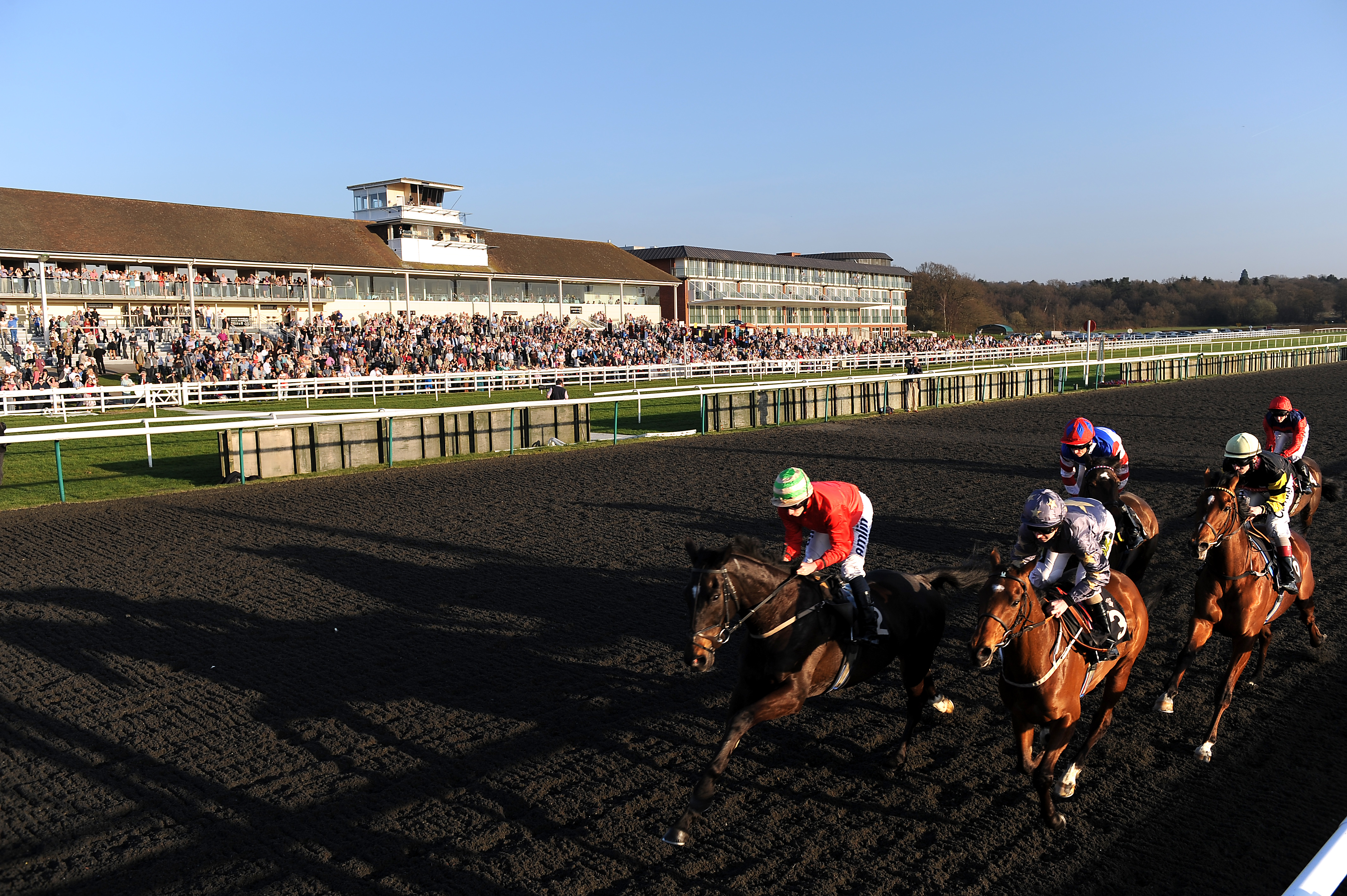 Image result for chelmsford races