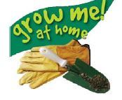grow me at home