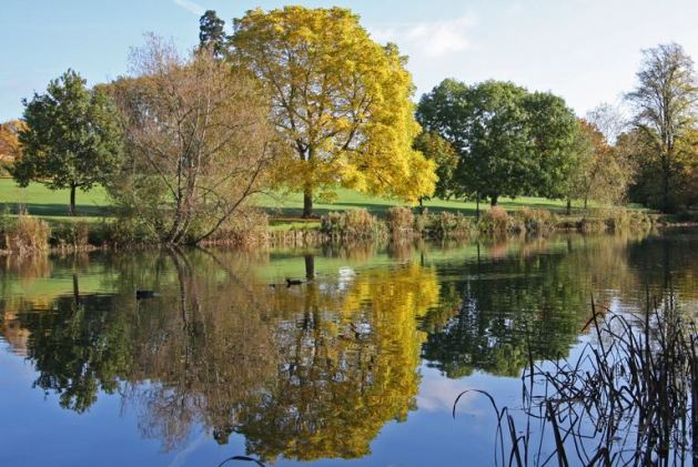 Autumn reflections in the Lower Lake